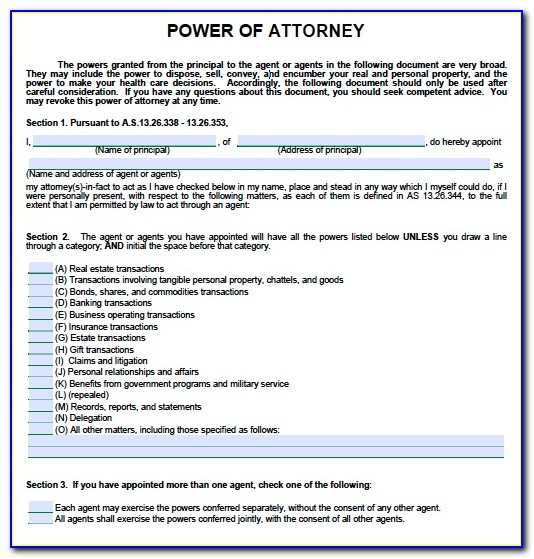 Durable Financial Power Of Attorney Form Florida