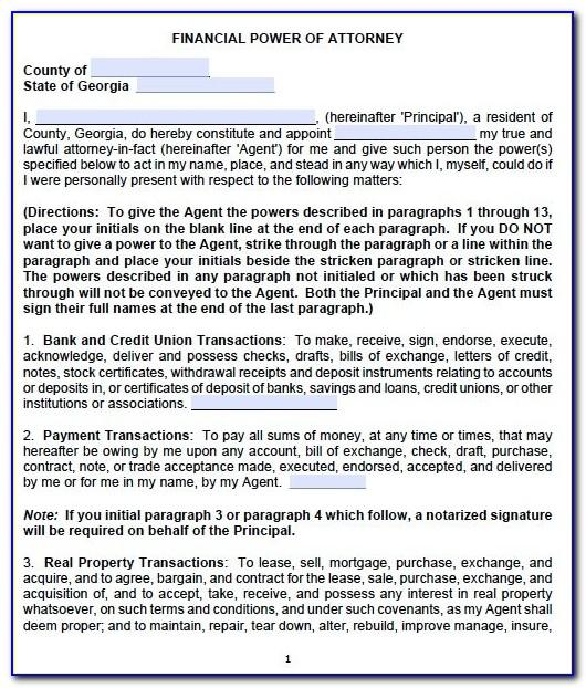 Free Financial Power Of Attorney Form Georgia