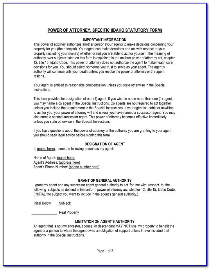 Idaho Power Of Attorney Form Dmv