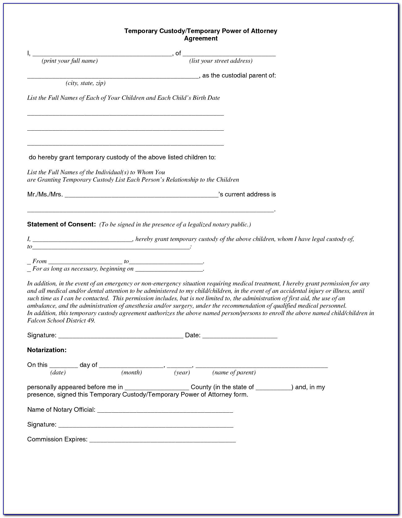 Temporary Child Custody Form Georgia