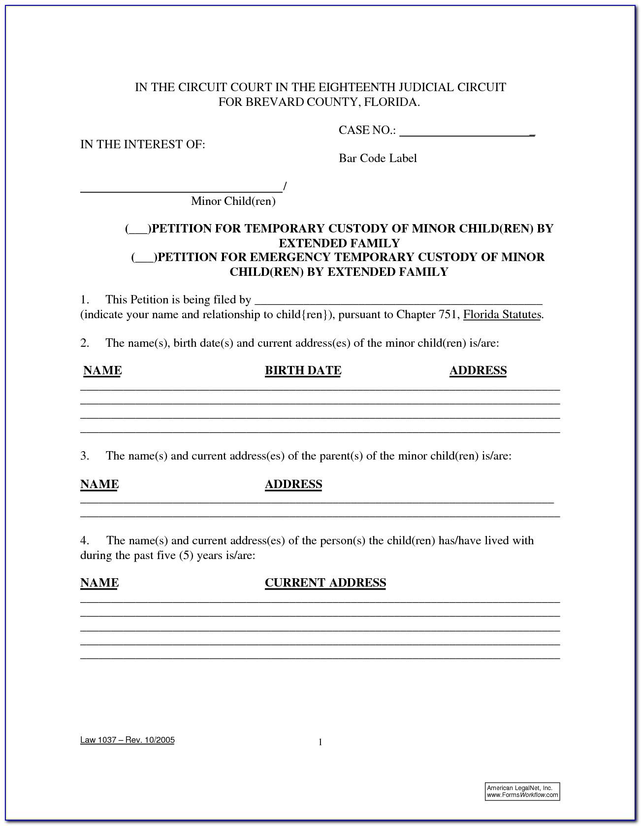 Temporary Guardianship Form Florida