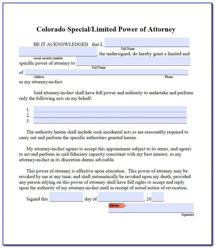 Colorado Power Of Attorney Form Dr 0145
