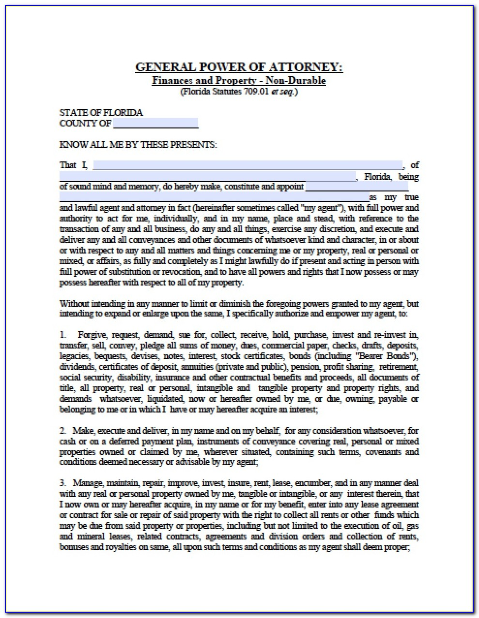 Florida General Durable Power Of Attorney Form Pdf