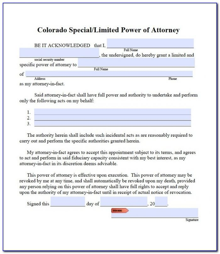 Medical Power Of Attorney Form For Child Colorado