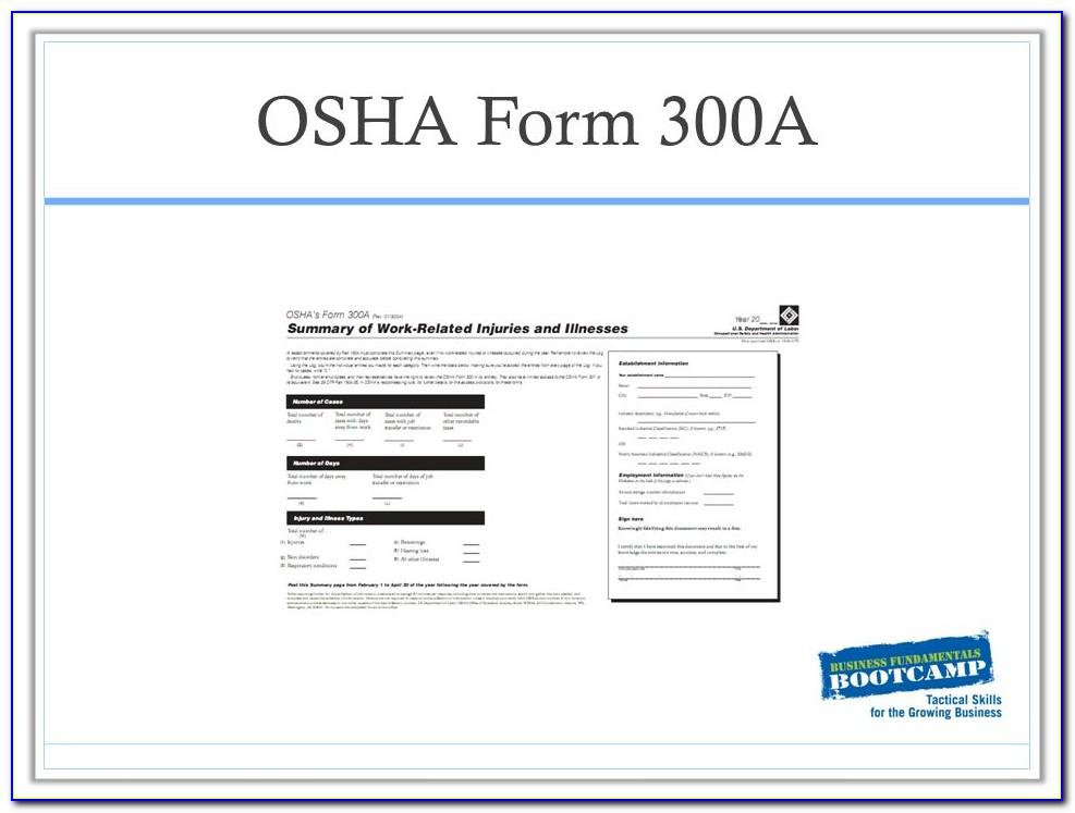 Osha Form 300a Pdf Fillable
