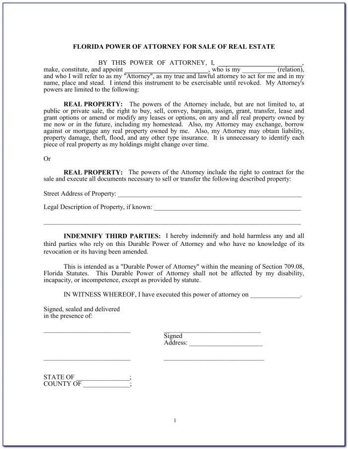 Power Of Attorney Form Florida Dmv Pdf