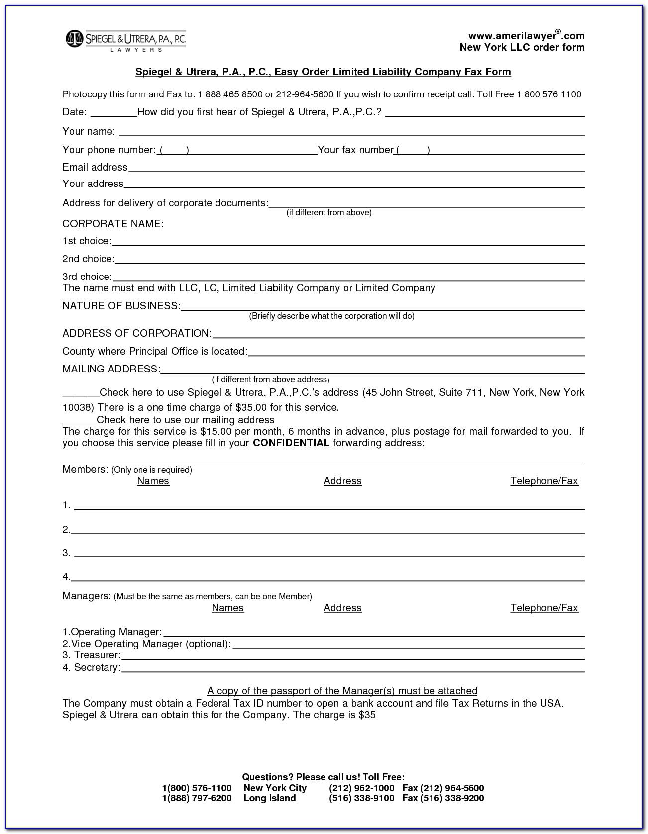 Short Form Operating Agreement Single Member Llc