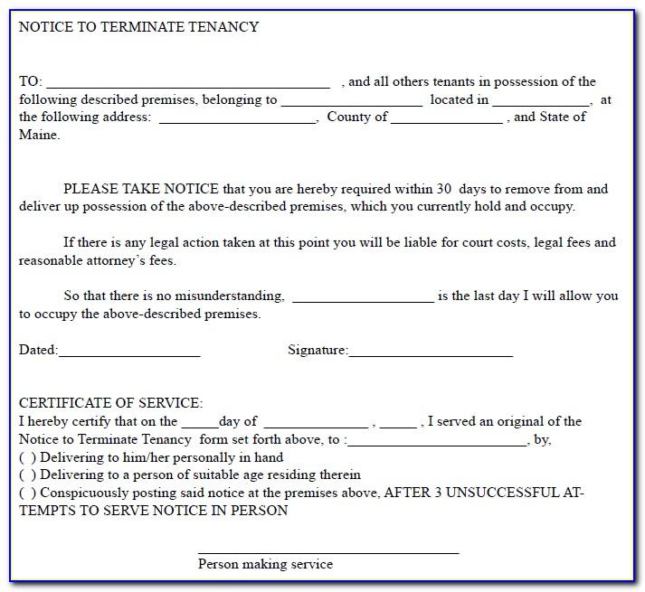 Tenant's Notice To Terminate Tenancy Form N9