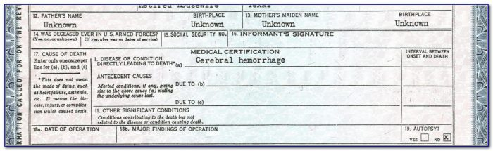 Texas Birth Certificate Formats