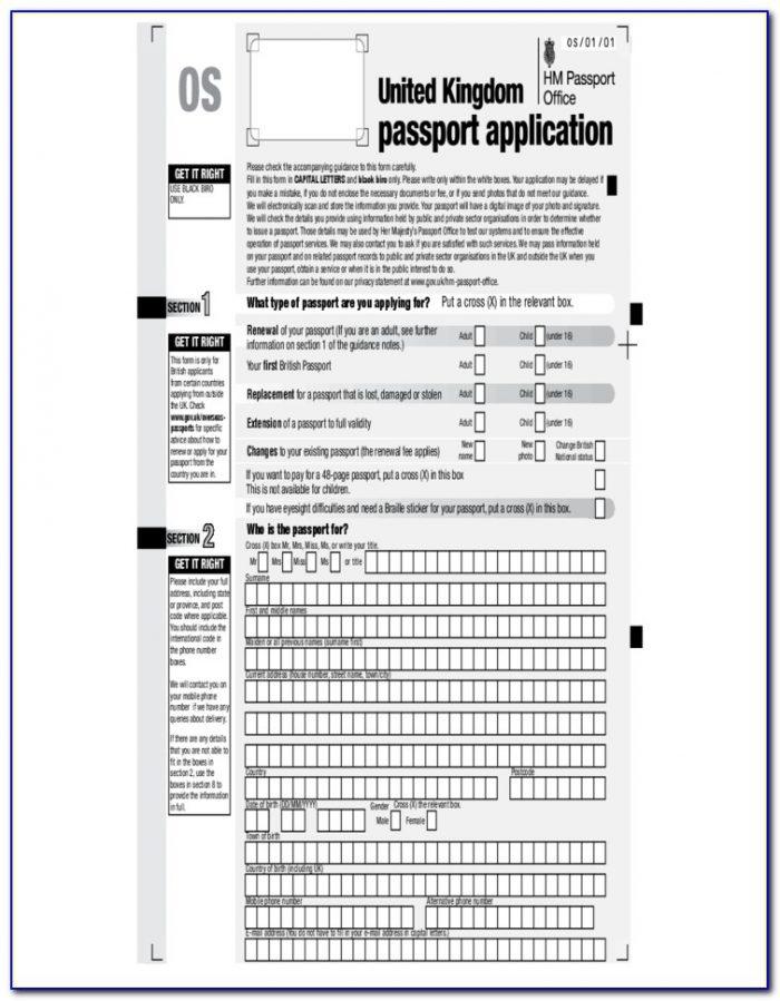 British Passport Renewal Forms C1