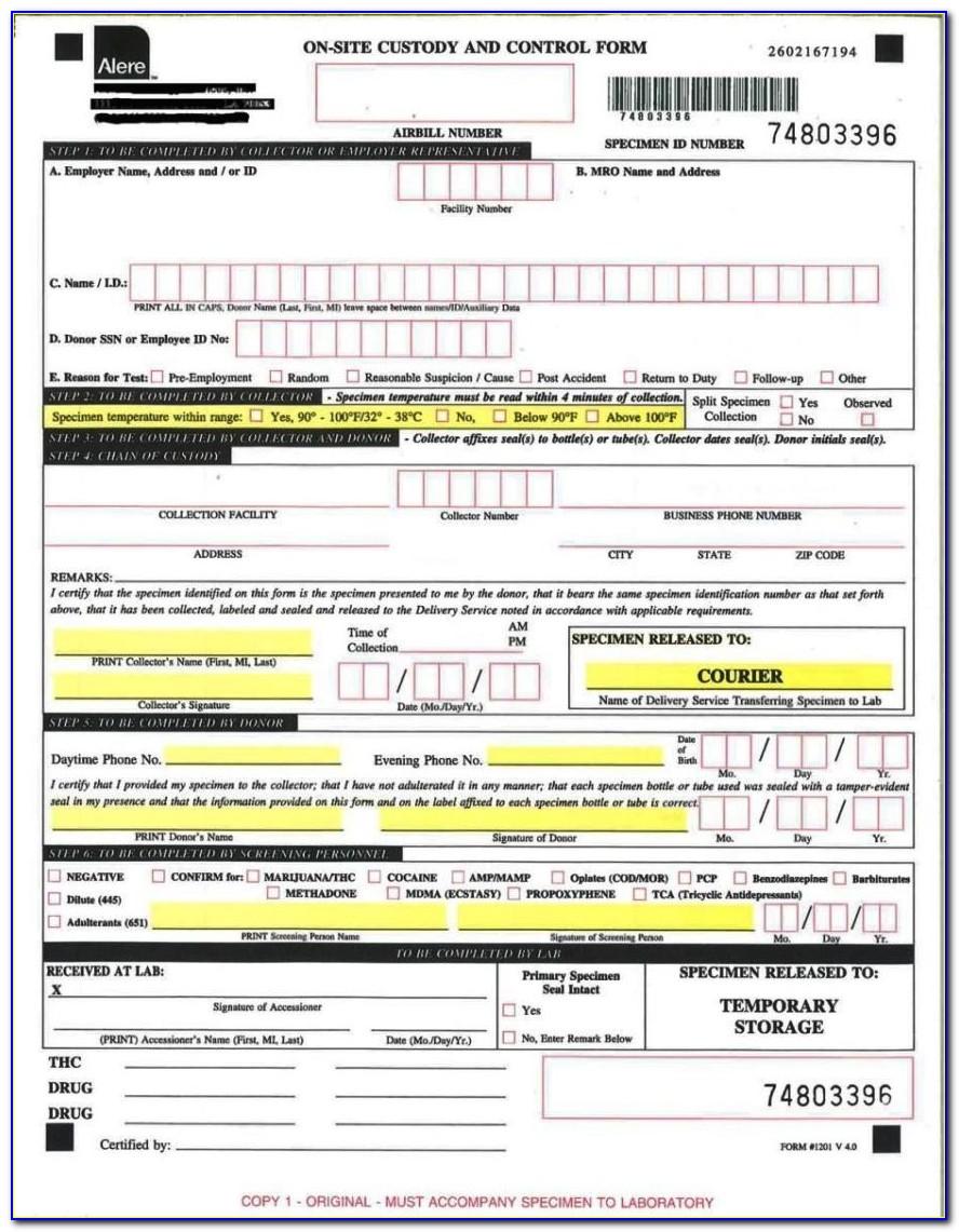 Drug Testing Chain Of Custody Form Template