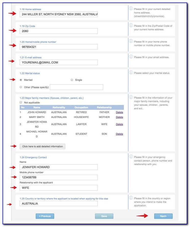 Fillable China Visa Application Form