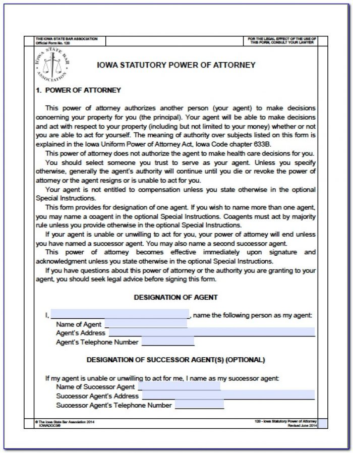 Financial Durable Power Of Attorney Form Colorado