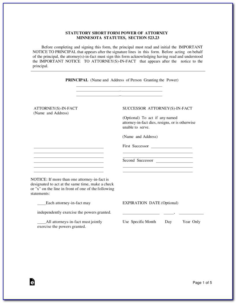 Free Power Of Attorney Form Minnesota