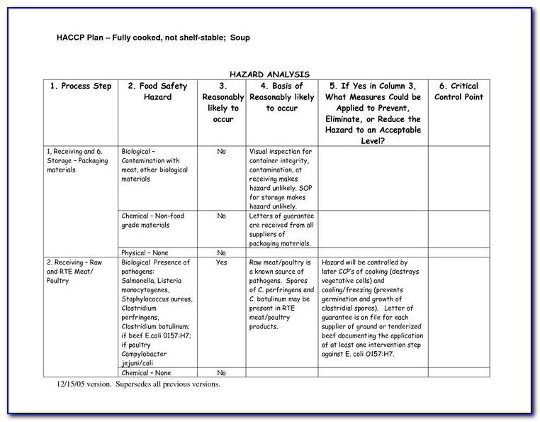 Haccp Plan Template Excel