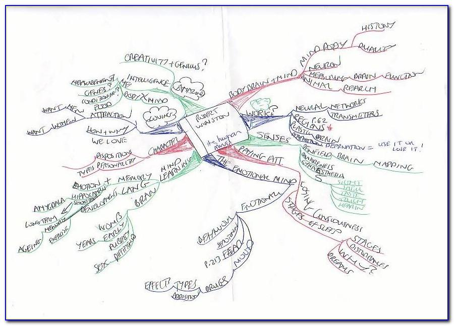 Brain Mapping Academy Ebook