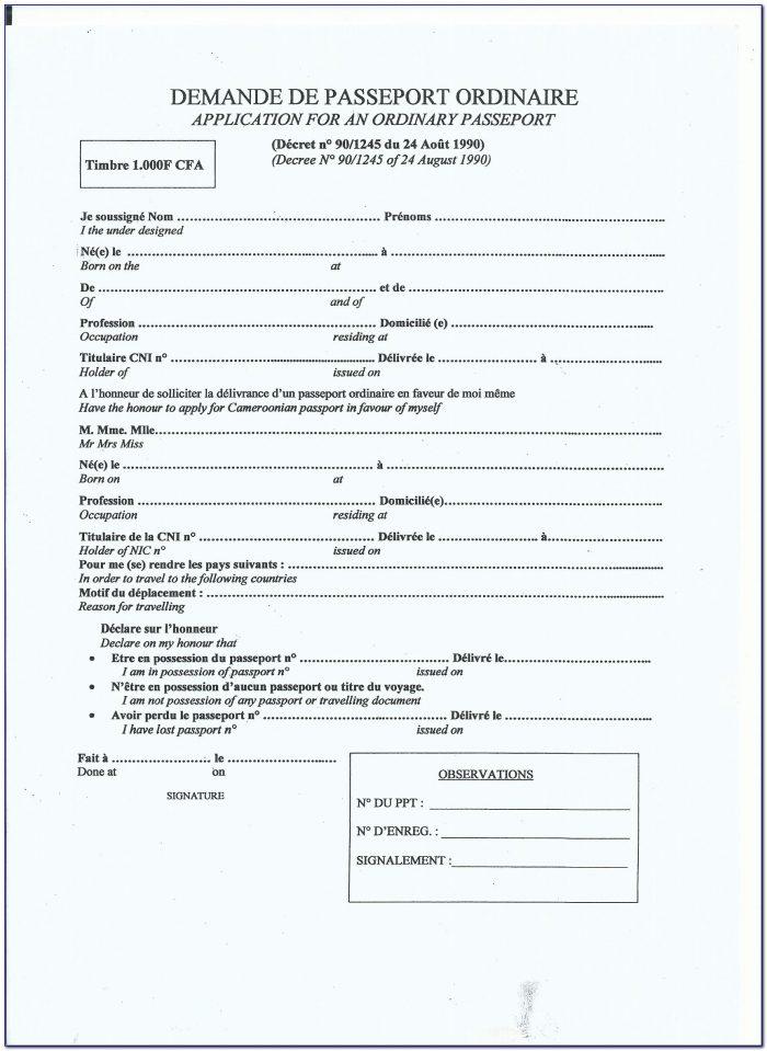 British Child Passport Application Form Download