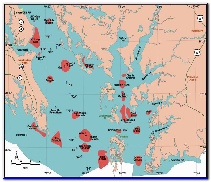 Chesapeake Bay Fishing Map