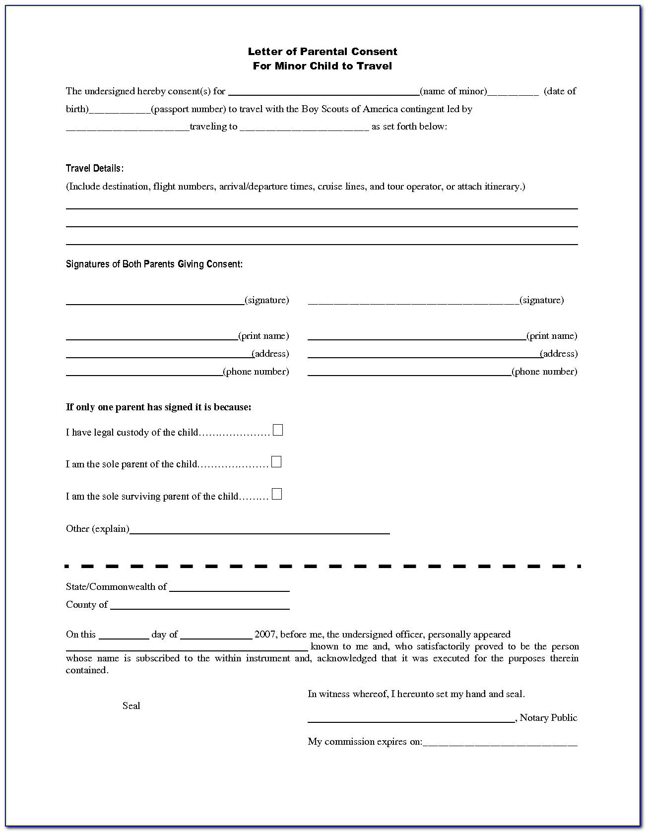 Nigerian Visa Application Form Pdf