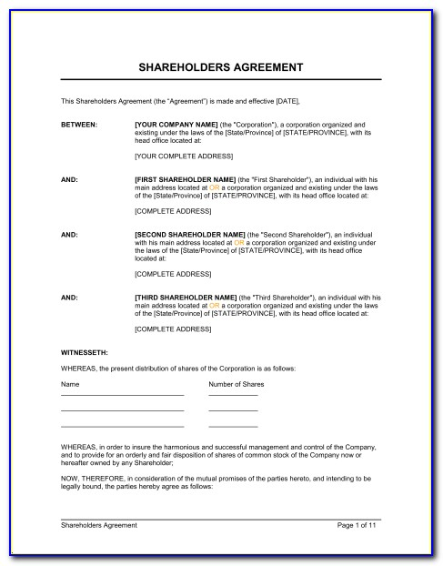 Florida Shareholders Agreement Form
