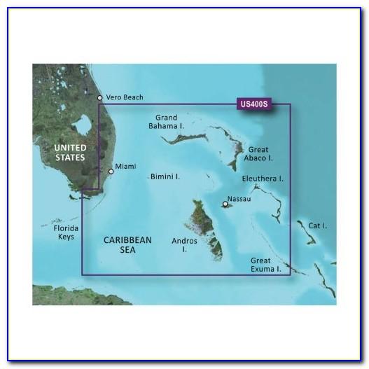 Garmin Alpha 100 Map Card