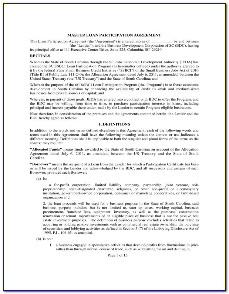 Loan Participation Agreement Form