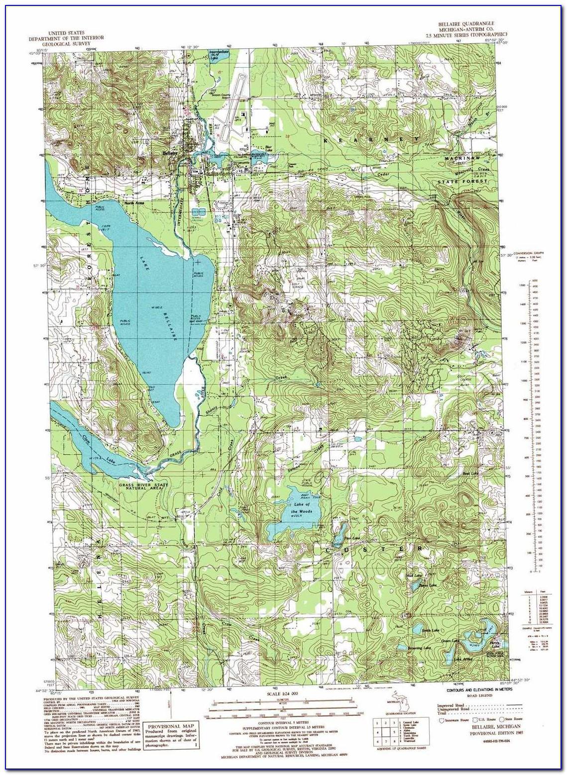 Michigan Topographic Map