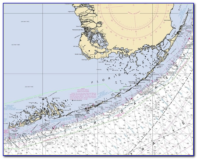 Nautical Map Of Florida