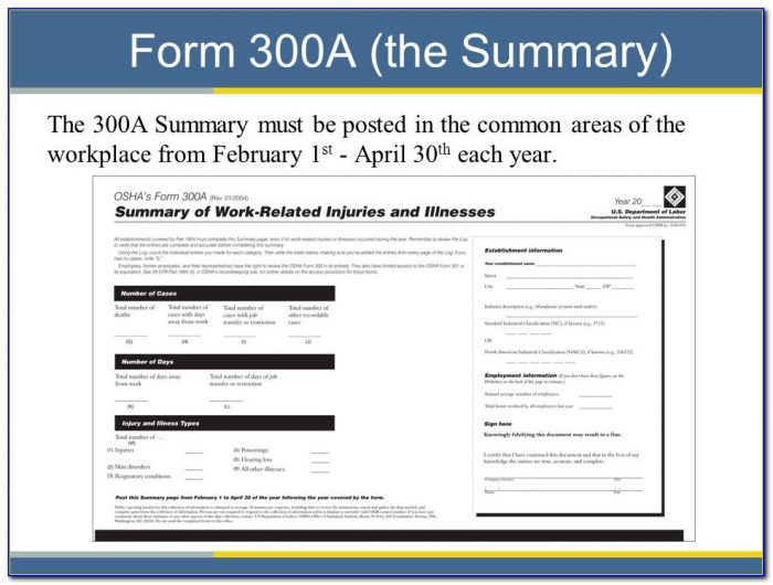 Osha Form 300a Fillable