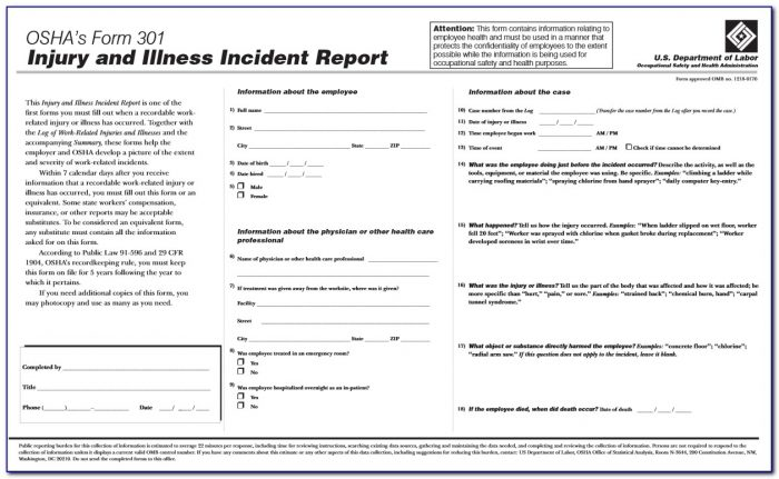Osha Form 300a Instructions