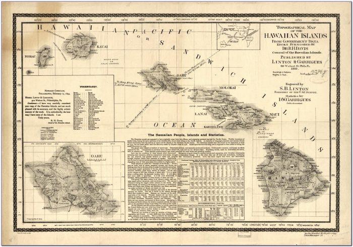 Puna Hawaii Topographic Map