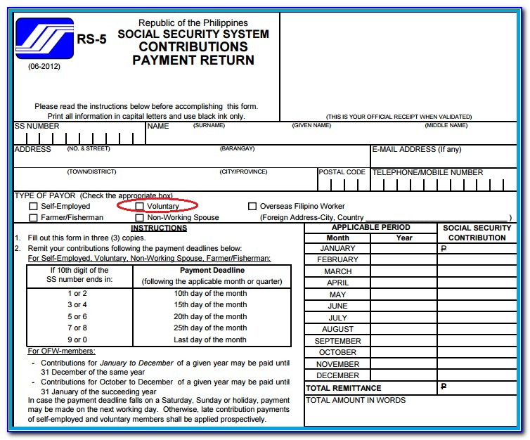 Social Security System Loan Form