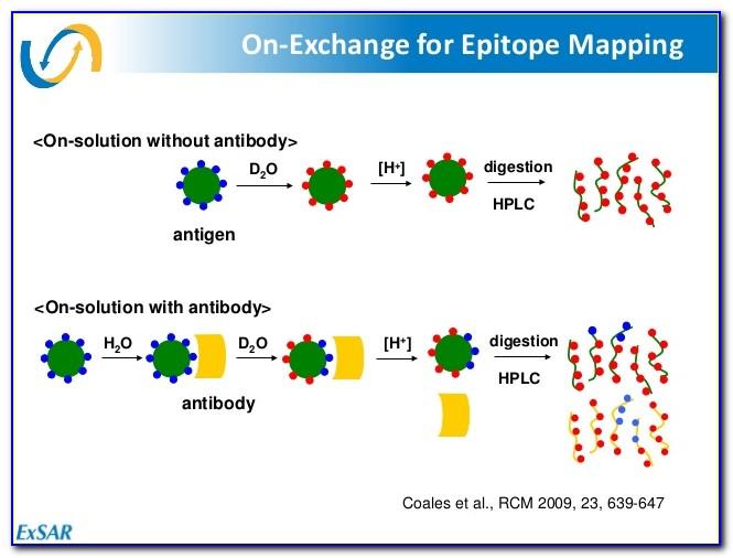 Antibody Epitope Mapping Mass Spectrometry