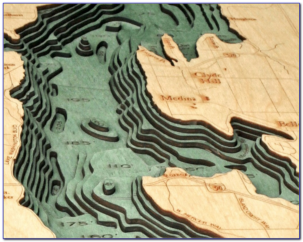 Bathymetric Map Art
