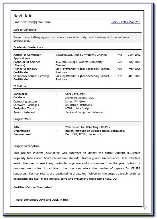 Best Resume Format Download For Fresher Doc