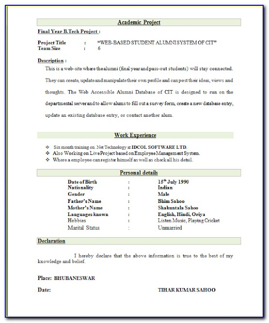 Best Resume Format Download For Fresher