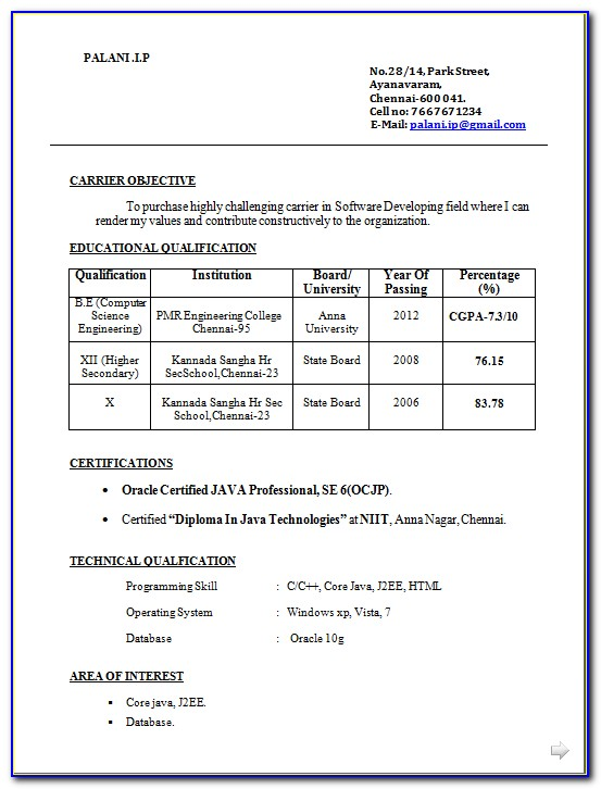 Best Resume Format Download In Ms Word 2007