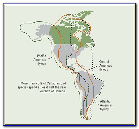Bird Maps Of North America
