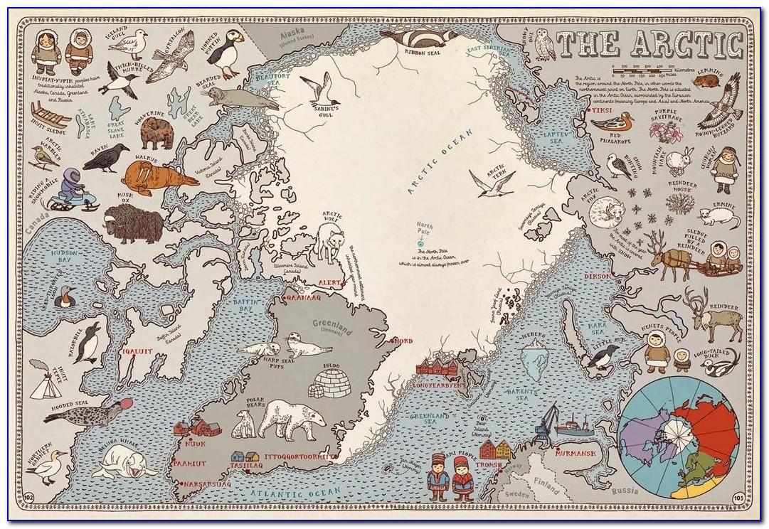 Children's Book Called Maps