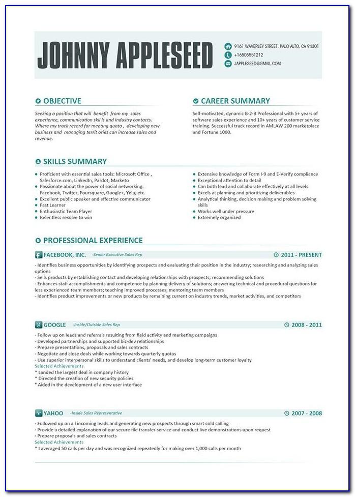 Contemporary Resume Templates Word