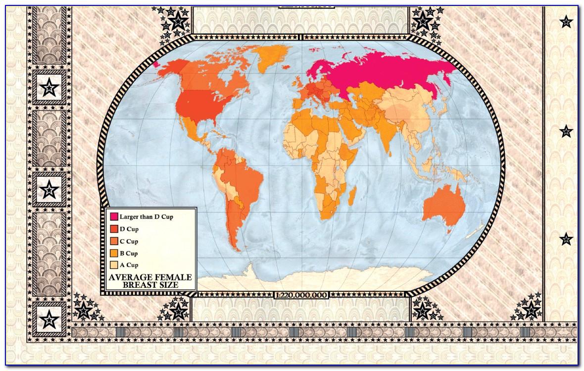 Curious Map Book