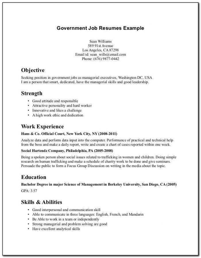 Examples Of Resumes For Jobs With No Experience