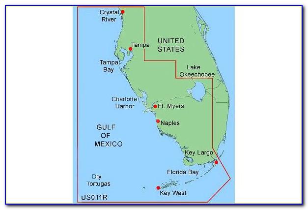 Garmin Sat Nav Florida Maps