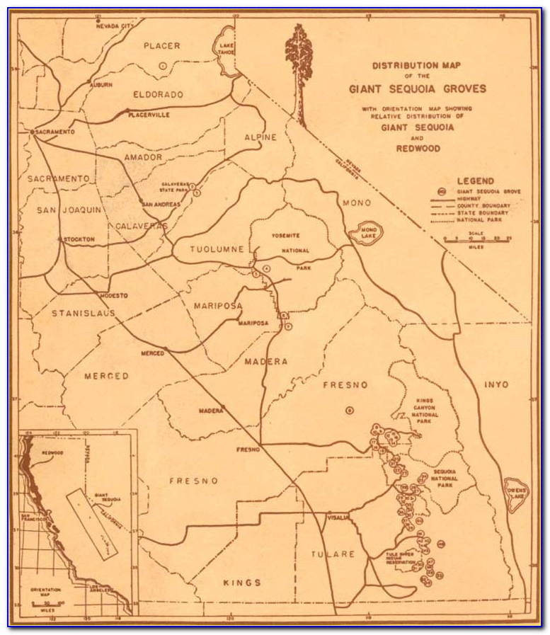 Giant Sequoia Park Map