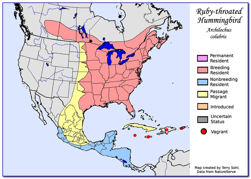 Hummingbird Locator Map