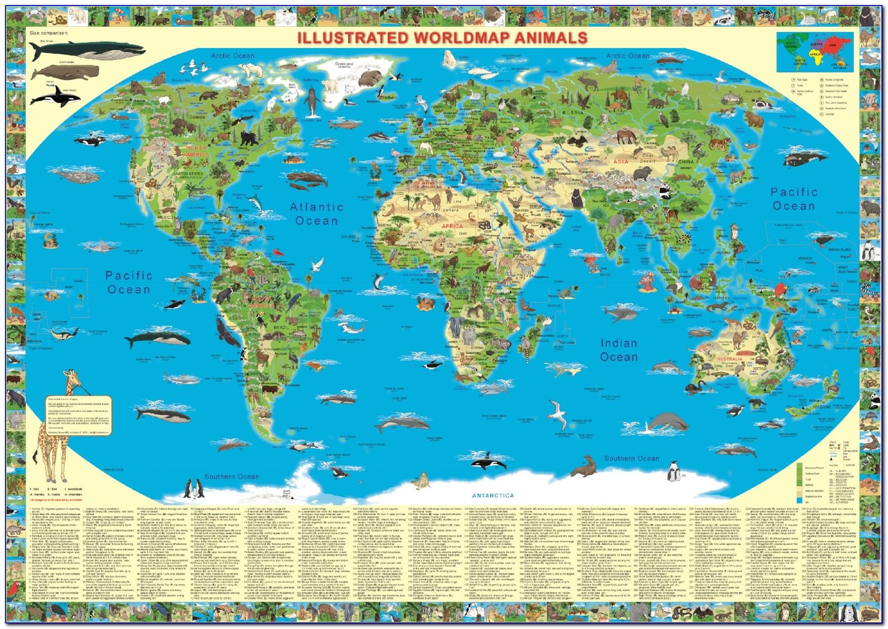 Illustrated World Map Animals