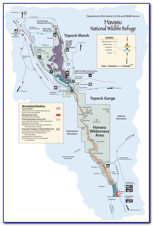 Lake Havasu Fishing Report April 2018