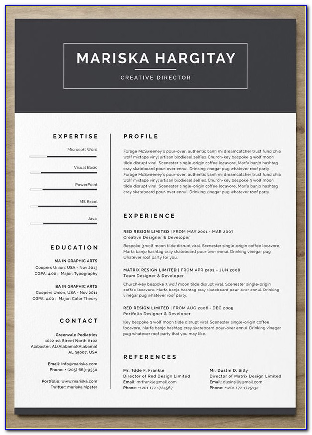 Modern Resume Templates Free Download Word