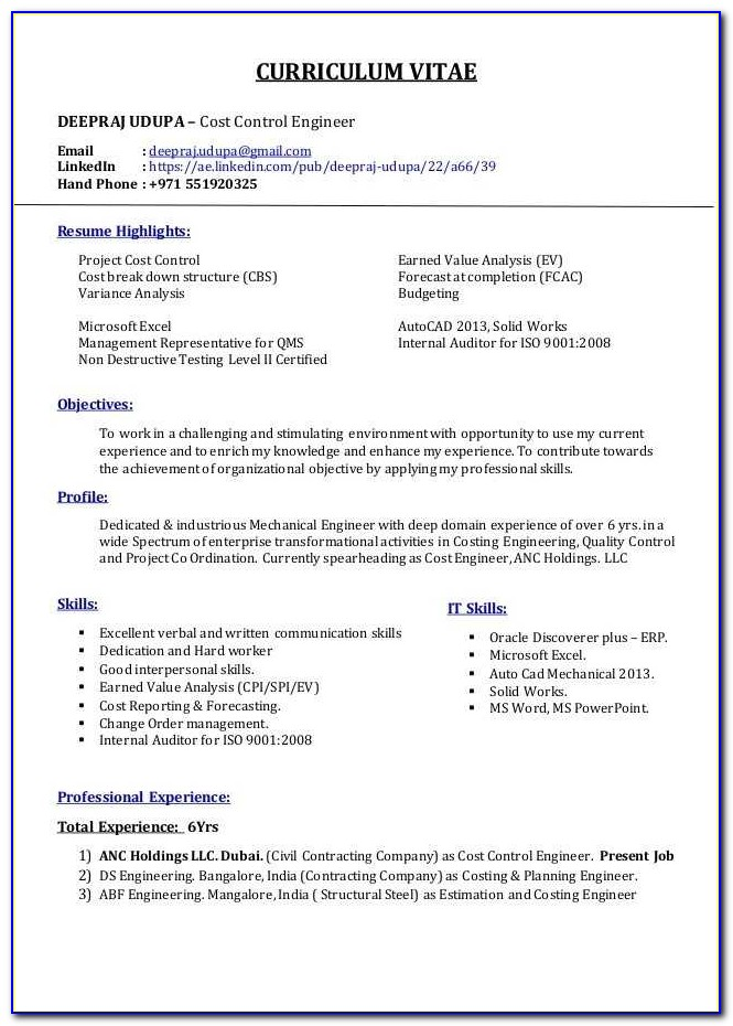 Resume Writing Service Cost Lovely Professional Resume Writers Cost New Template For Resume Best