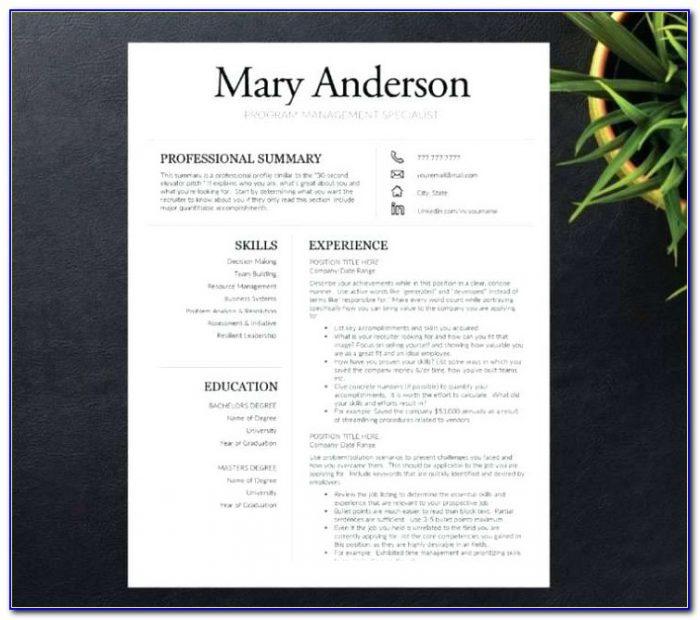 Resume Portfolio Folder Examples